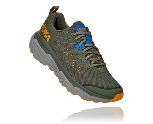 HOKA Men's Challenger Atr 6 Trail Running Shoes in Thyme/Sharkskin - 1106510-TSHR