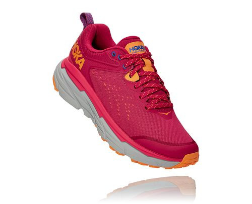 HOKA Women's Challenger Atr 6 Trail Running Shoes in Jazzy/Paradise Pink - 1106512-JPPN