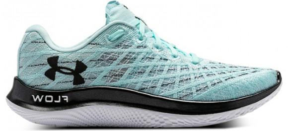 Under Armour FLOW Velociti Wind CN Marathon Running Shoes/Sneakers 3025222-300 - 3025222-300