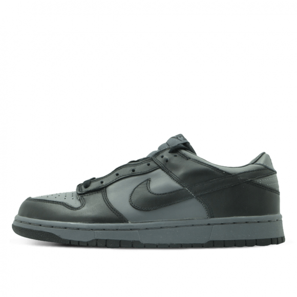 Nike Dunk Low Pro Light Graphite - 304714-001