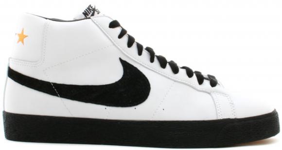 Nike SB Blazer Germany - 310801-101