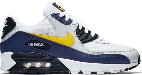 air max 90 essential homme