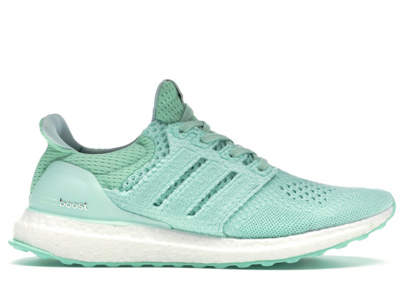 adidas Ultra Boost 1.0 Naked Waves Pack - BB1141