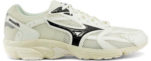 Mizuno Spark CN1 Marathon Running Shoes/Sneakers D1GH213301 - D1GH213301