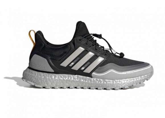 Ultraboost WINTER.RDY DNA Shoes - FW8696
